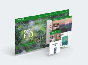 Pascal Picq - web - réalisations - tao sense - 2018