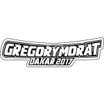 GREGORY MORAT - logo - clients - tao sense - 2018